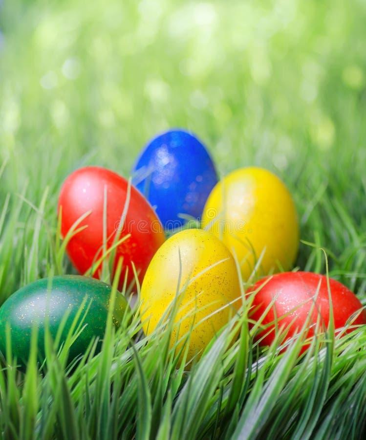 Ovos de Easter na grama verde imagem de stock