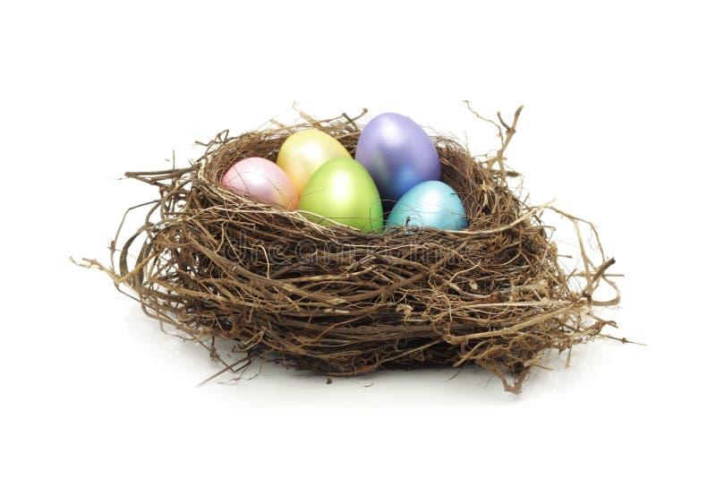 Ovos de Easter no ninho real do pássaro fotografia de stock