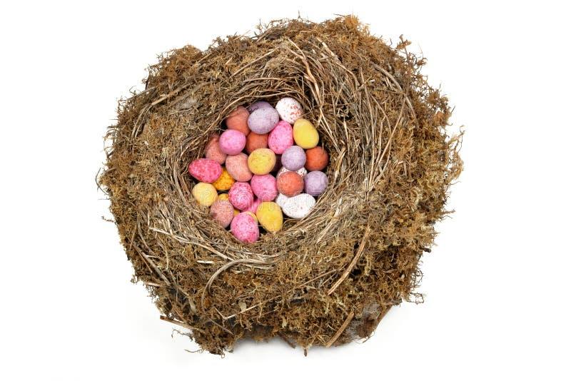 Ovos de ninho fotografia de stock royalty free