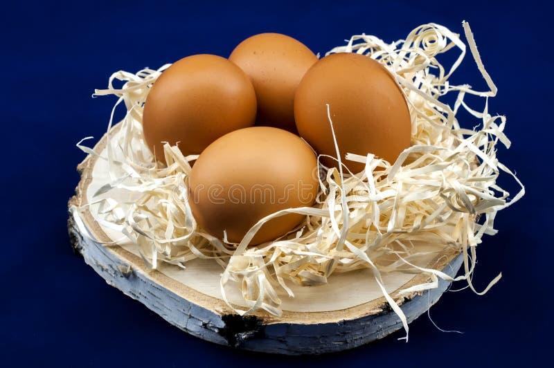 Ovos dietéticos da galinha para o café da manhã imagens de stock royalty free