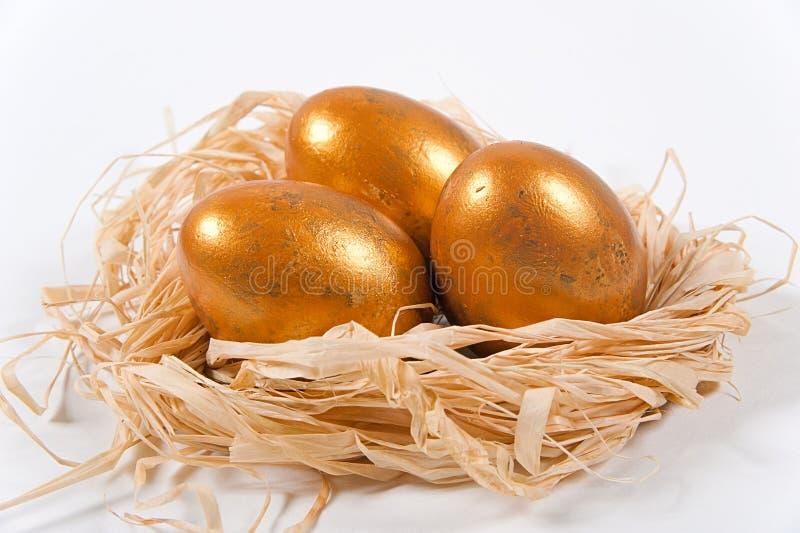 Ovos dourados em um ninho decorativo fotografia de stock