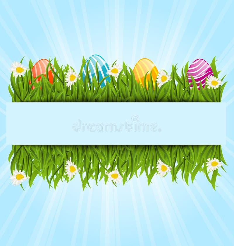 Ovos e camomiles coloridos da Páscoa na grama verde com espaço para ilustração royalty free