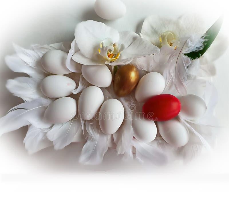 Ovos e ouro e vermelho com do fundo branco da orquídea das flores ilustração amarela vermelha do projeto do feriado do tema da Pá fotos de stock royalty free
