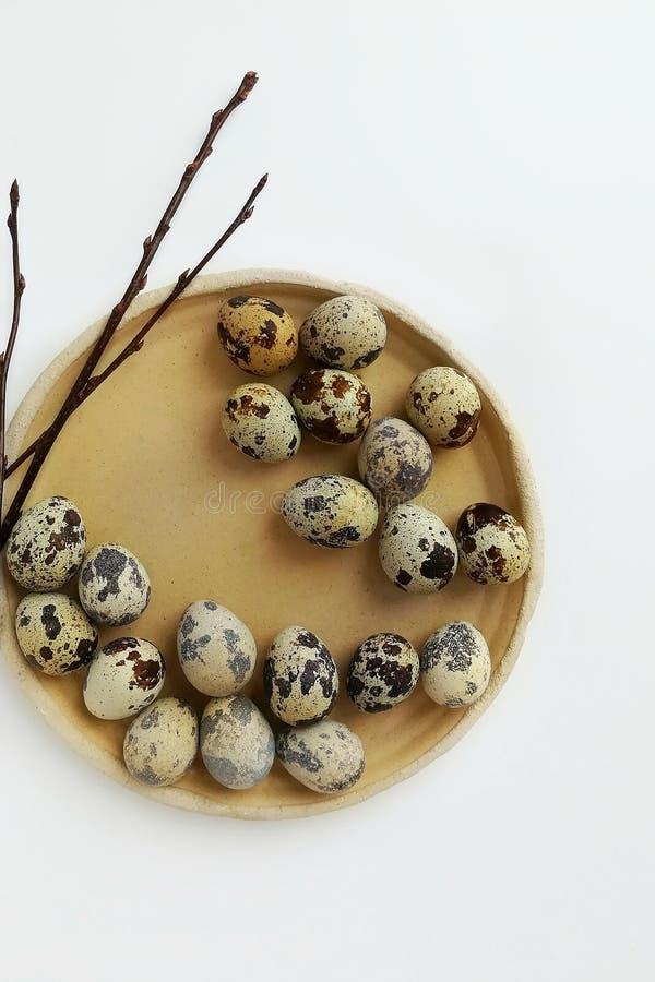 Ovos e ramos de codorniz em uma placa cer?mica bege fotos de stock royalty free