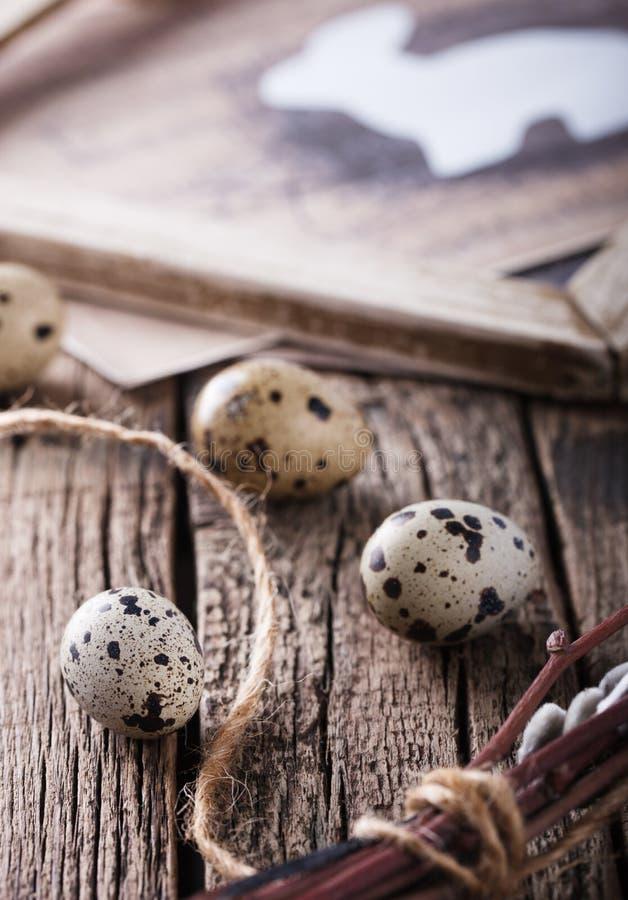Ovos e salgueiro de codorniz fotografia de stock