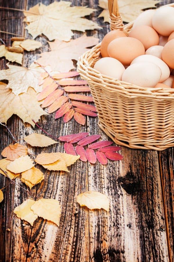 Ovos em uma cesta fotografia de stock royalty free