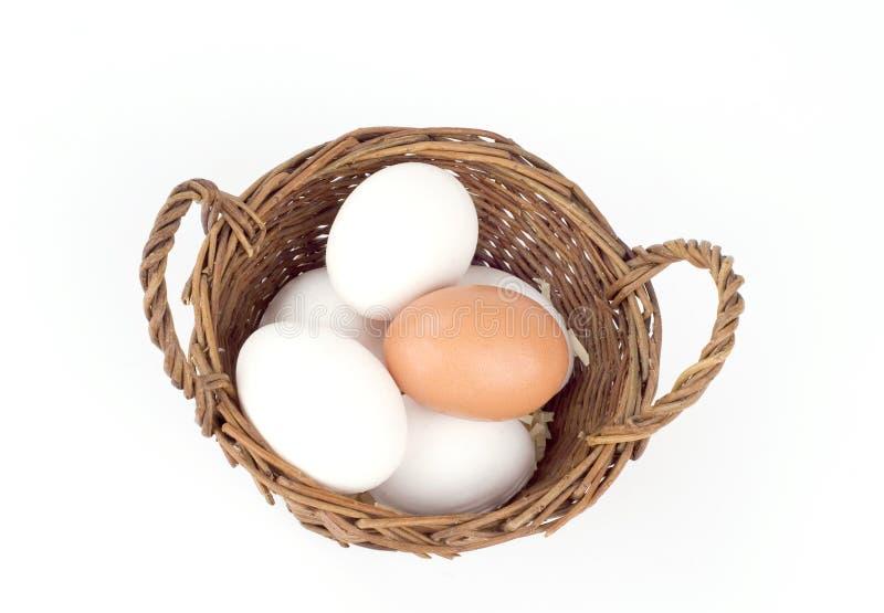 Ovos em uma cesta foto de stock royalty free