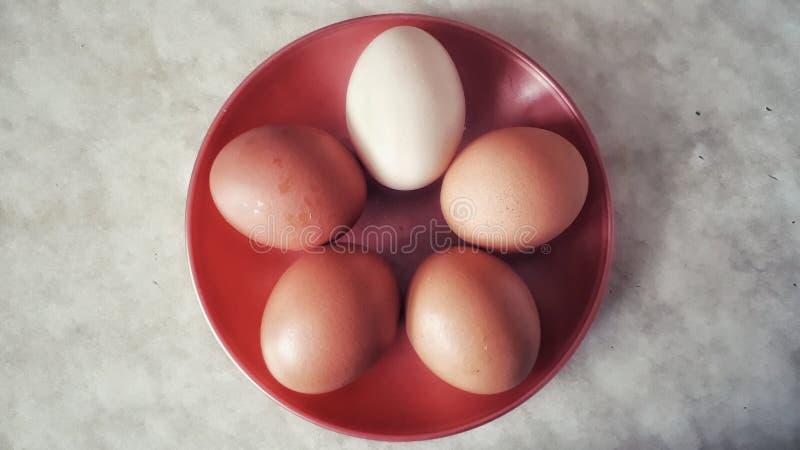 Ovos em uma opinião superior da placa imagens de stock