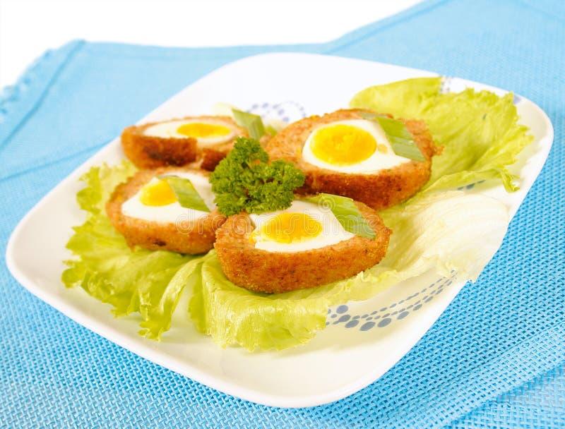 Ovos escoceses fotografia de stock