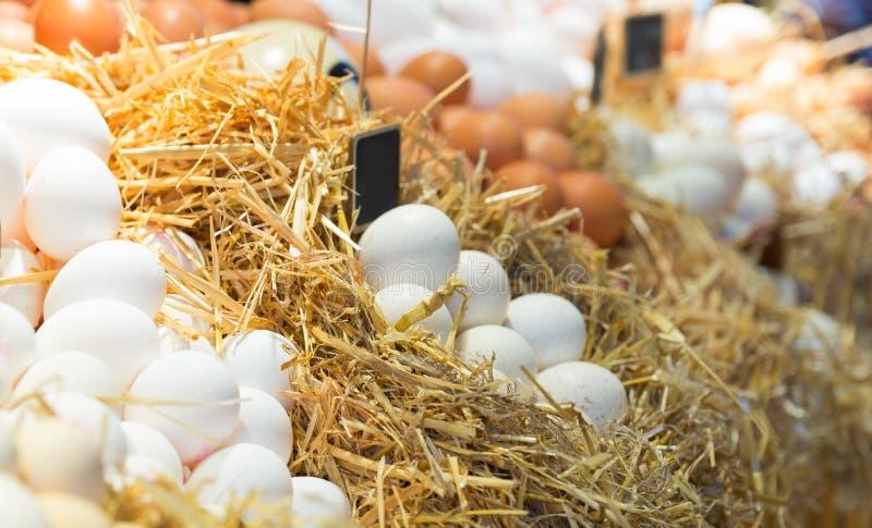 Ovos frescos da exploração agrícola imagem de stock royalty free
