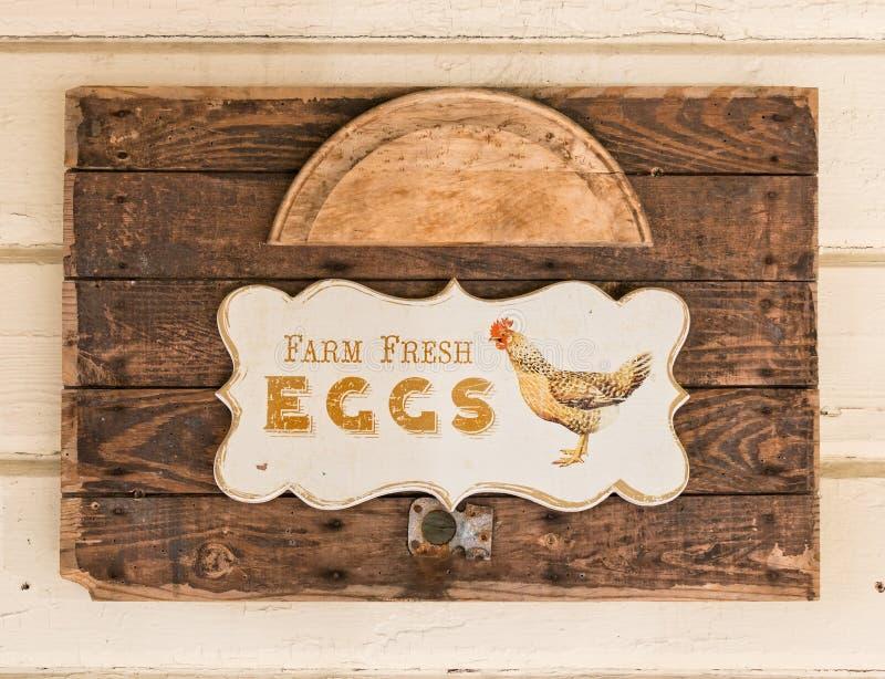 Ovos frescos da exploração agrícola fotos de stock royalty free