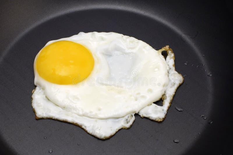 Ovos fritados fotos de stock