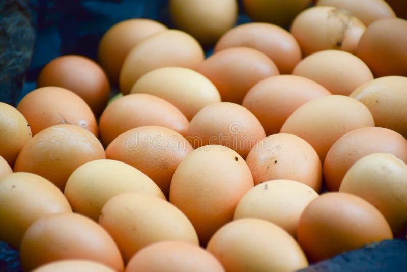 Ovos grelhados, mercado da manhã no país foto de stock