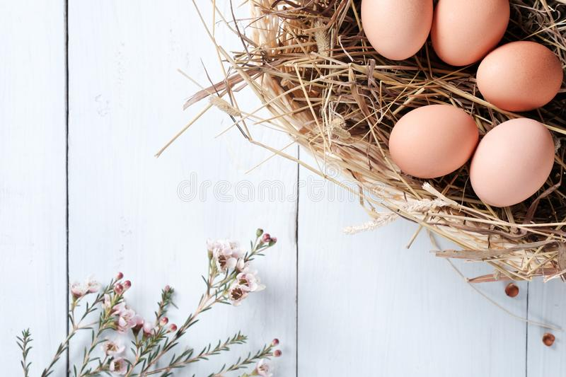 Ovos marrons frescos na cesta e no ramo das flores no fundo de madeira azul pastel fotos de stock royalty free