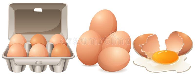 Ovos na caixa da caixa e em ovo rachado ilustração royalty free
