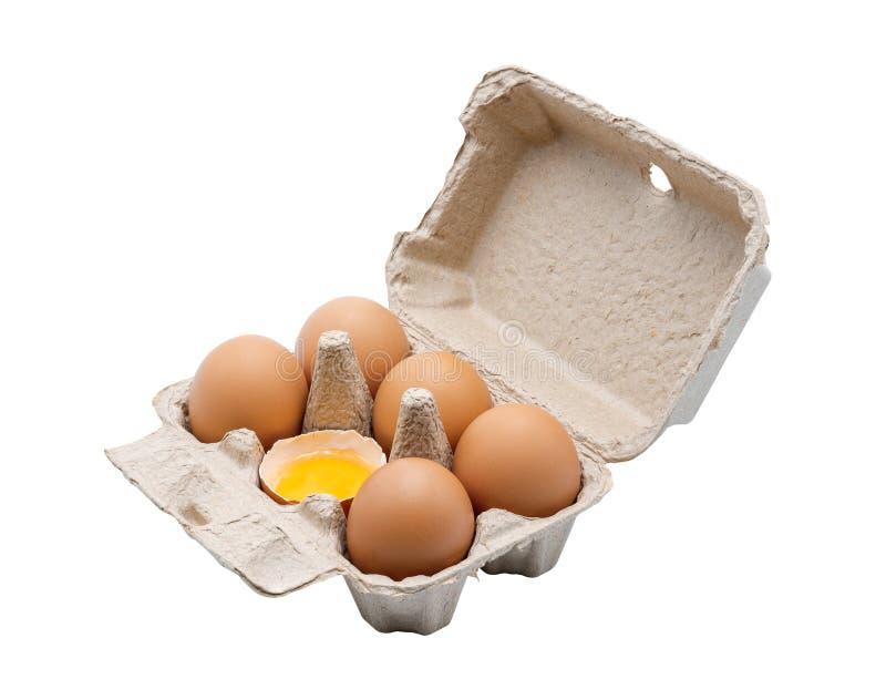 6 ovos na caixa do ovo imagem de stock