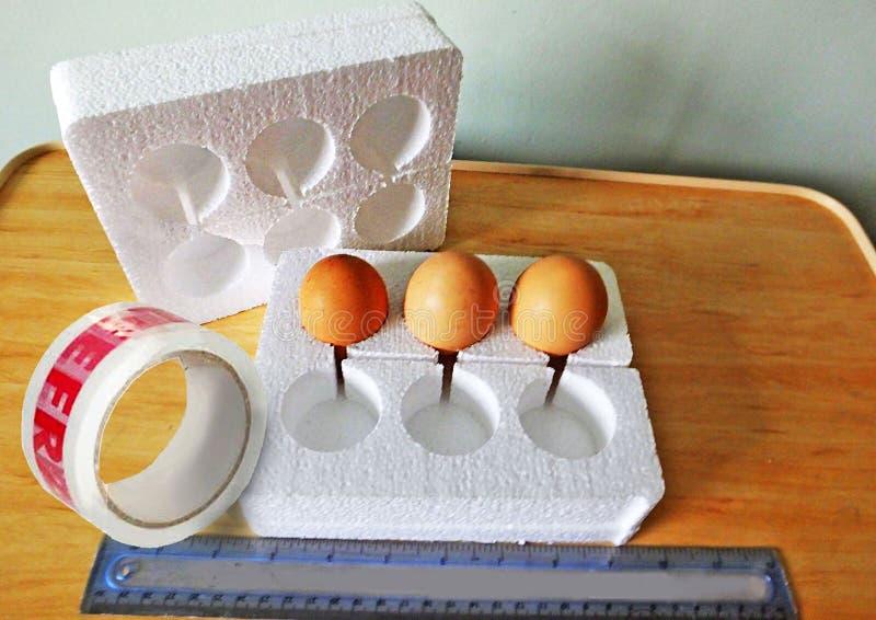 Ovos na caixa do poliestireno para afixar imagens de stock royalty free