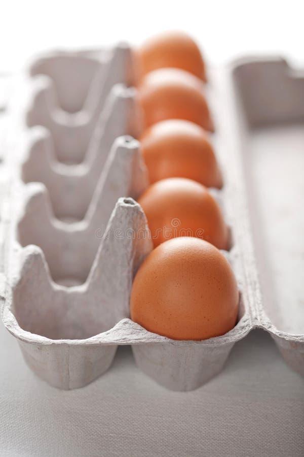 Ovos na caixa isolada fotos de stock