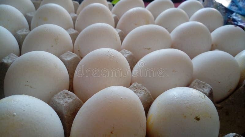 Ovos na loja foto de stock royalty free