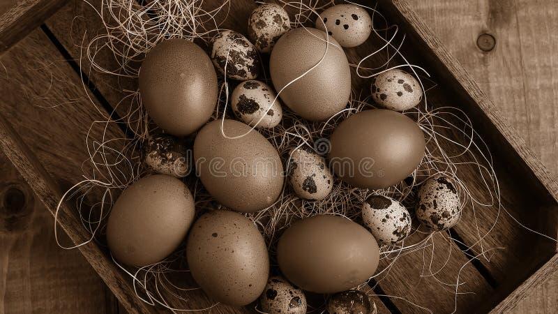 Ovos na vila na tabela Os produtos do ` s da exploração agrícola Foo fresco imagens de stock royalty free