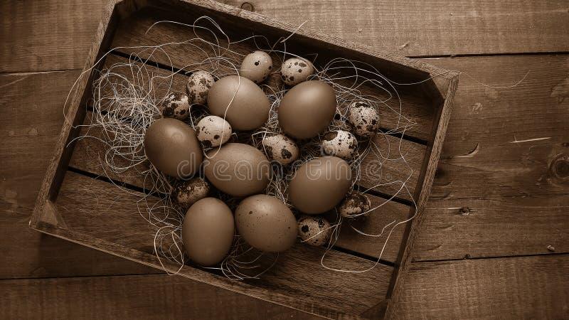 Ovos na vila na tabela Os produtos do ` s da exploração agrícola Foo fresco fotos de stock royalty free