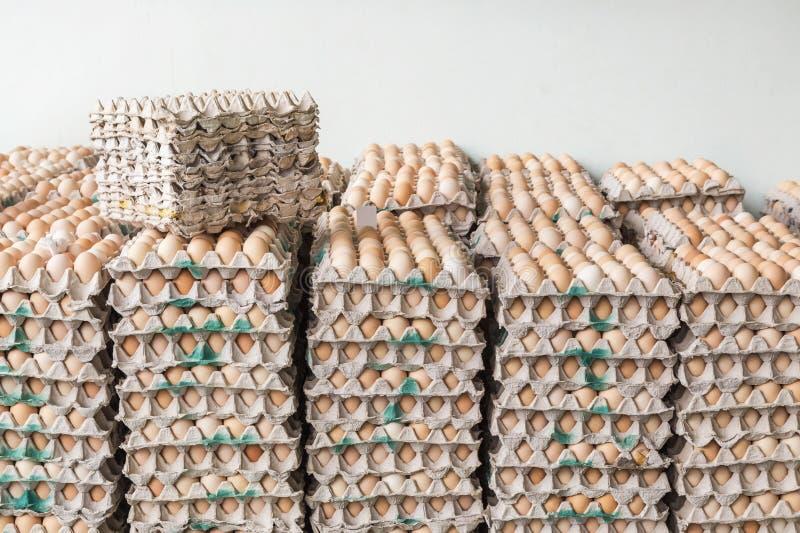 Ovos no pacote das bandejas de papel fotografia de stock