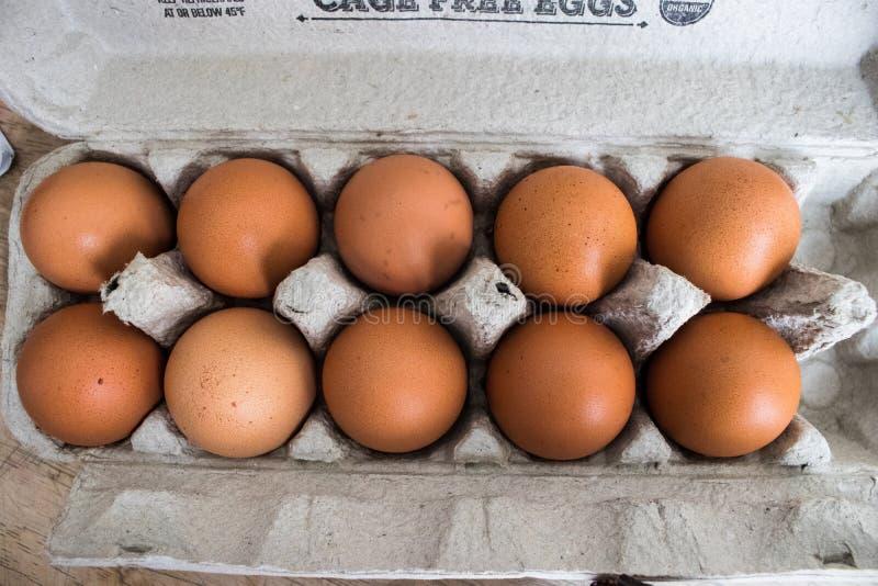 Ovos orgânicos de Brown na caixa imagem de stock royalty free
