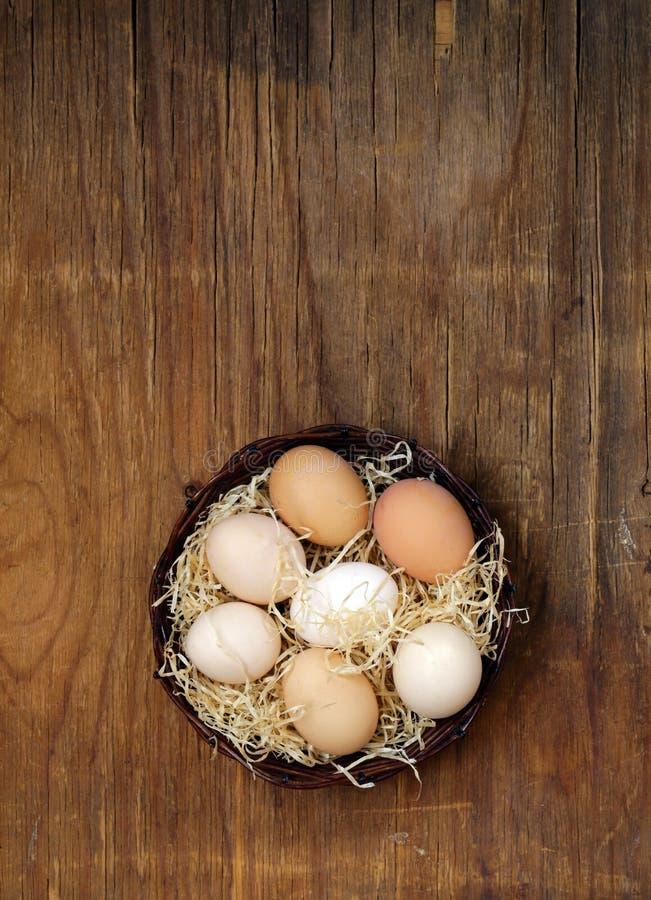 Ovos orgânicos naturais da exploração agrícola fotos de stock royalty free
