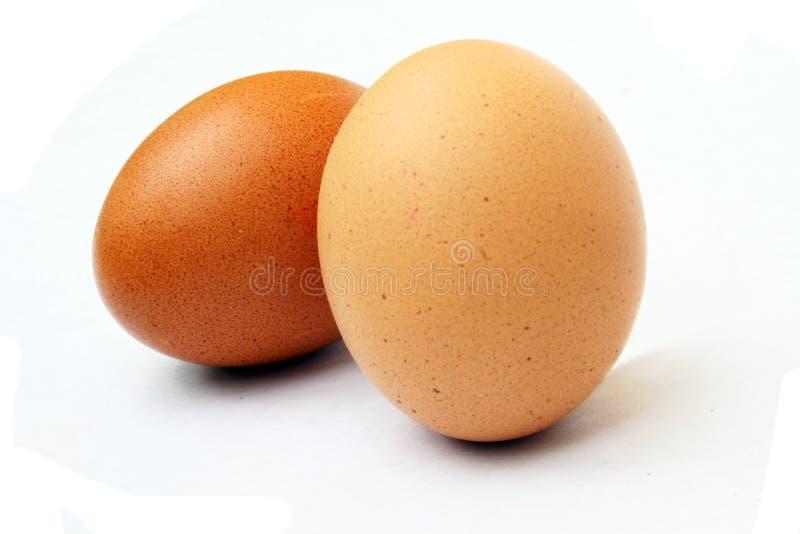 Ovos salpicados foto de stock royalty free