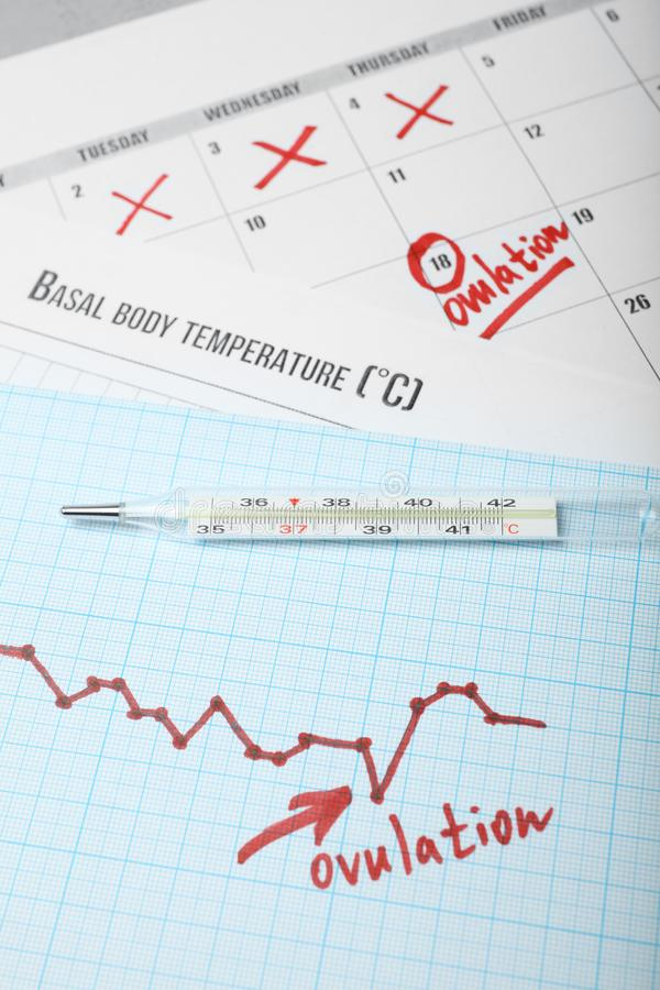 Ovulation cycle in women. Graph of basal temperature. Favorable time for conceiving child.  royalty free stock photo