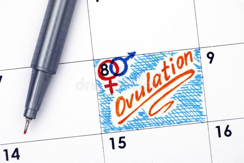 Ovulation de rappel dans le calendrier avec le stylo orange image libre de droits