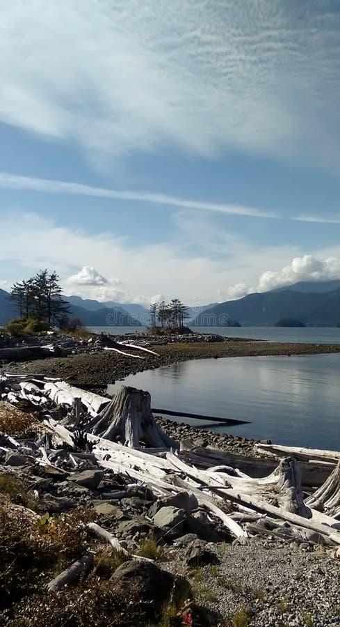 Owłosiona zatoczka, BC, Kanada fotografia royalty free