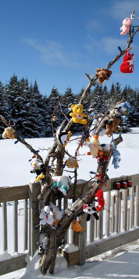 owłosiony Boże Narodzenie dzieciak s bawi się drzewa zdjęcia royalty free