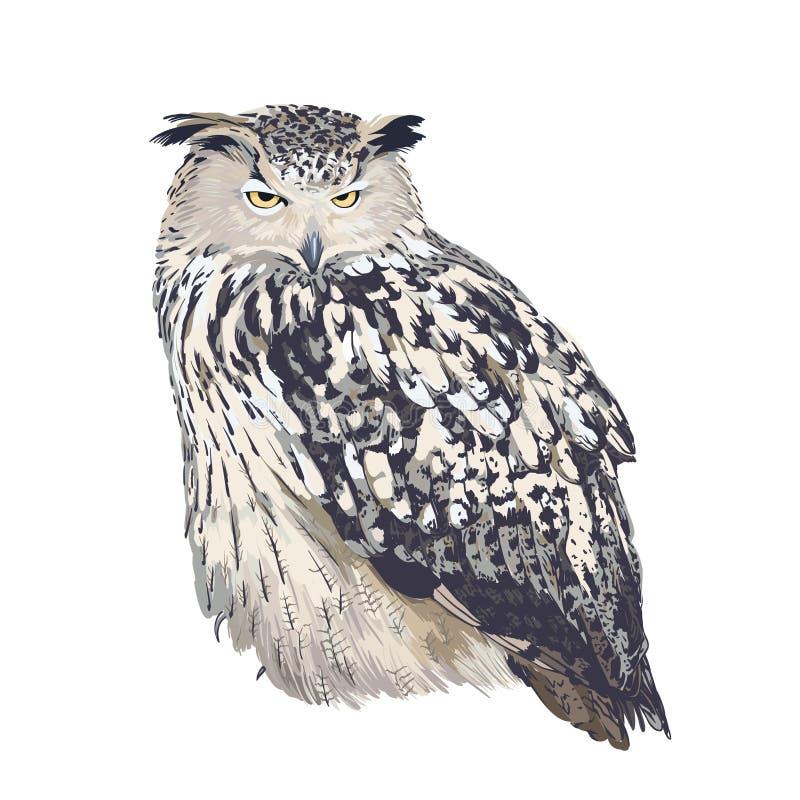 Ow de Eagle (bubón del bubón) en el fondo blanco ilustración del vector