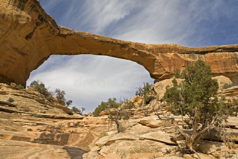 Owachamubrug bij Natuurlijk Bruggen Nationaal Monument, Utah royalty-vrije stock afbeelding