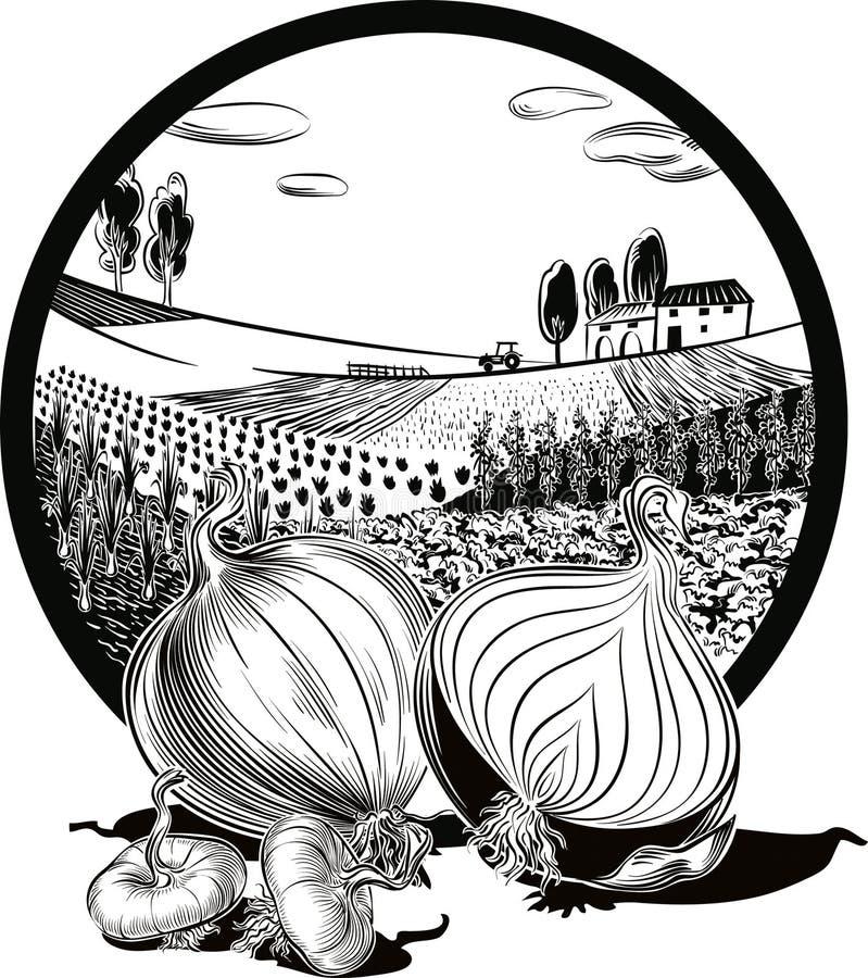 Owal rama z rolniczym krajobrazem i cebulami, ilustracji