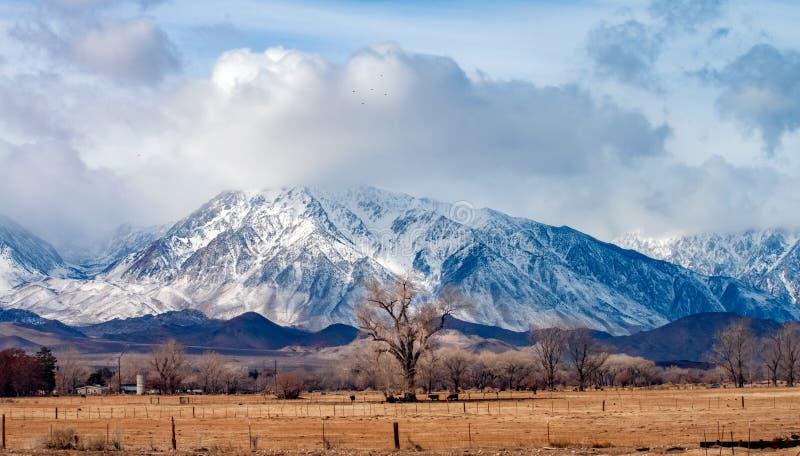Owens Dolinny rancho w Kalifornia popierał Sierra Nevada górami zdjęcia stock