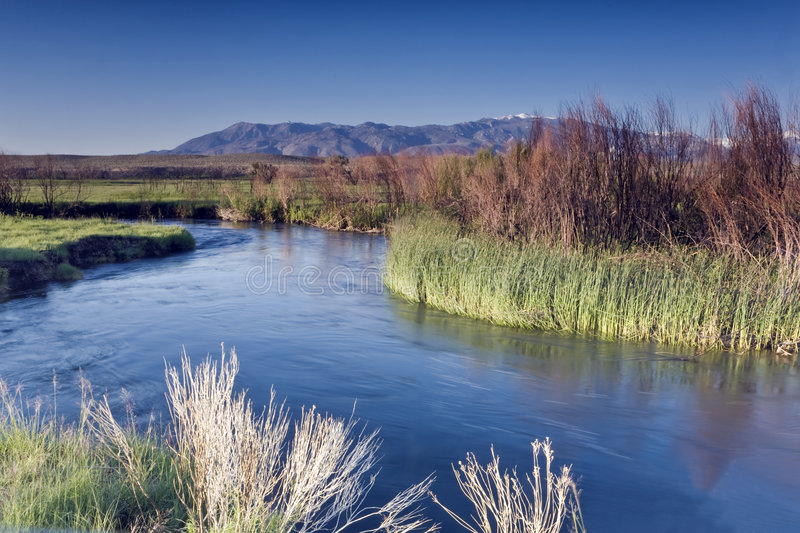 Owens River royalty free stock photo