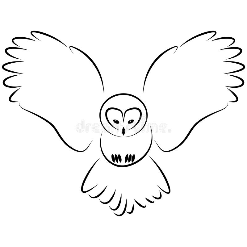 Download Owl stock vector. Image of wild, flying, flight, feather - 11683096