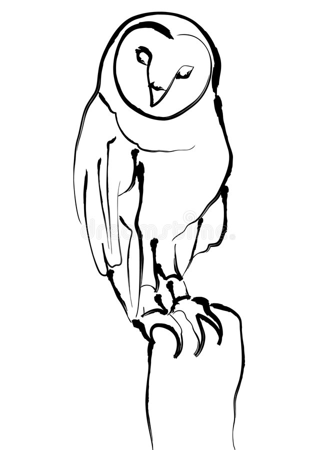 Owl. Black and white illustration of an owl stock illustration