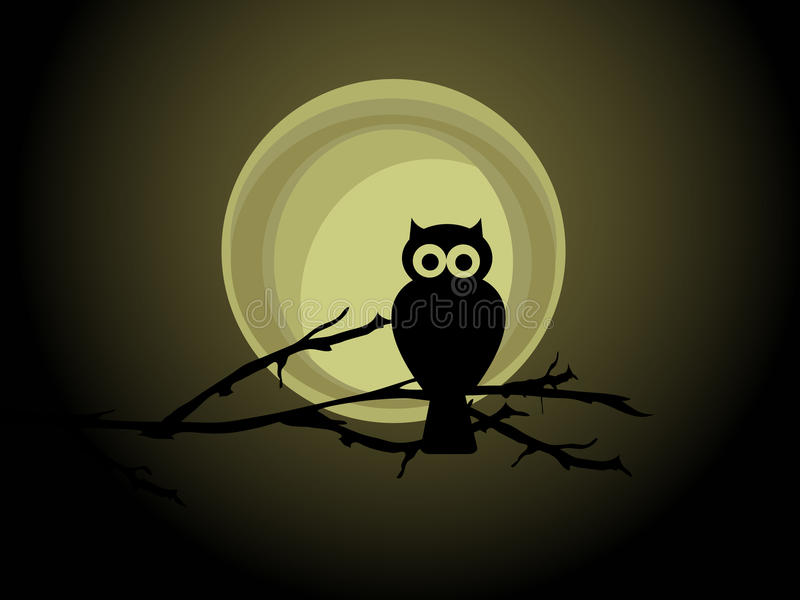 Download Owl stock vector. Image of background, night, evening - 24743982