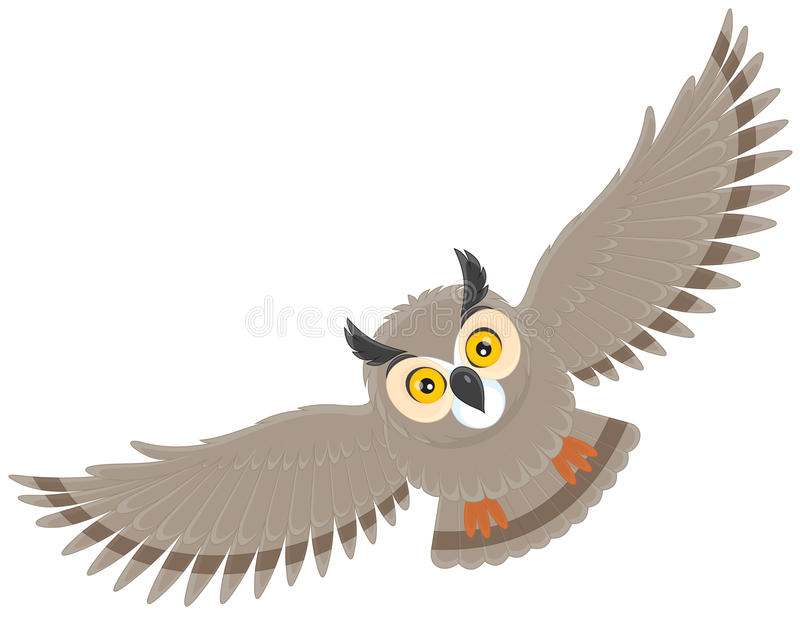 Download Owl stock vector. Image of bird, life, nature, eagle - 25212318