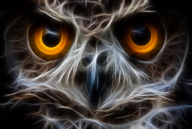Owl Bird Face Close Up illustration libre de droits