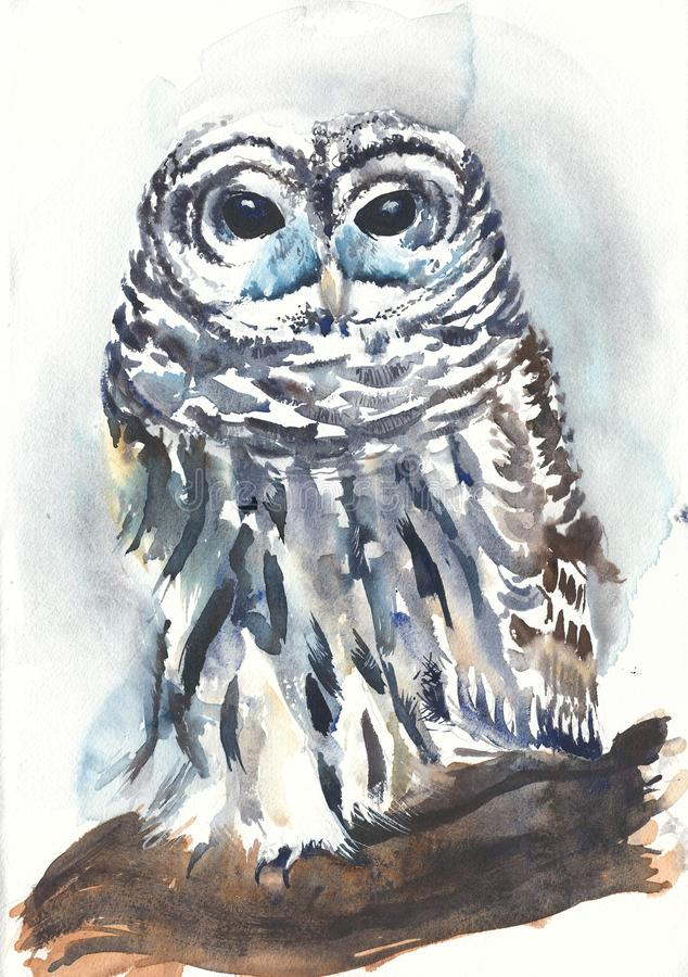 Owl bird sitting watercolor painting illustration vector illustration