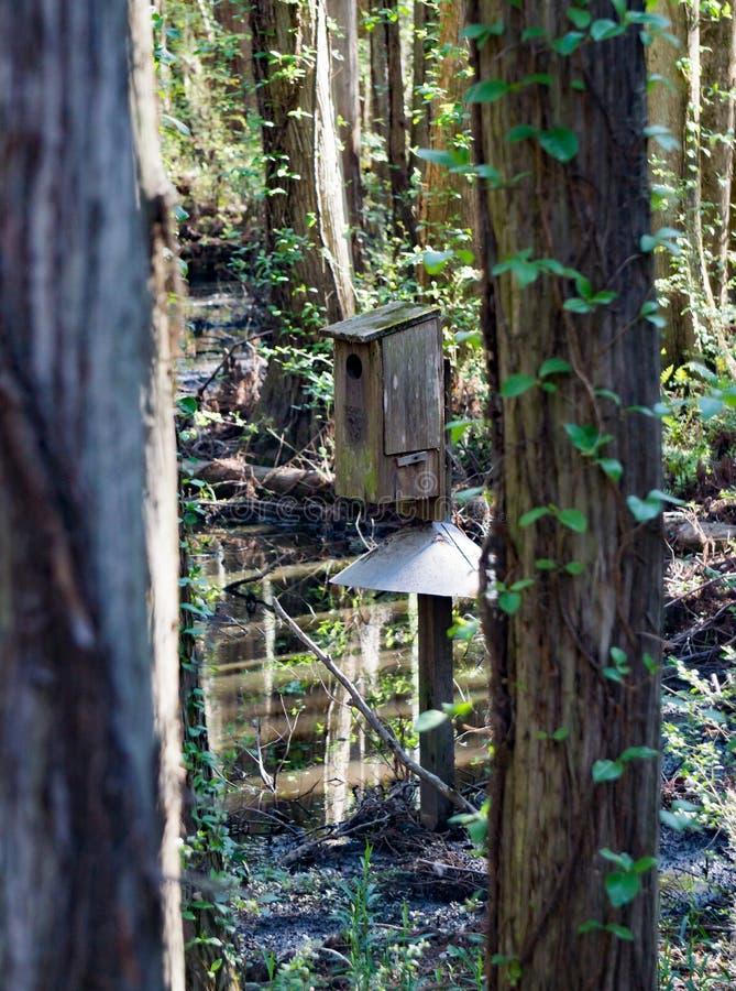 Owl Birdhouse stockbilder