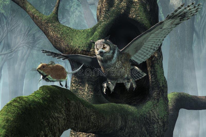 Owl Chasing une souris illustration stock