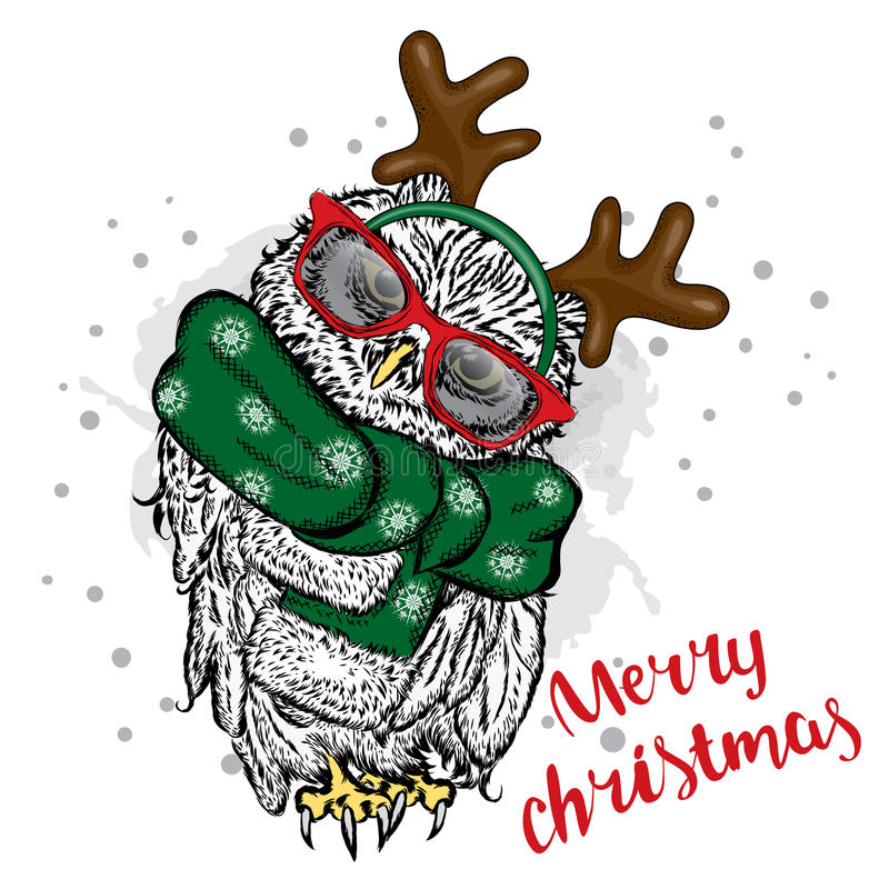 Owl in Christmas costumes. Owl with horns in a scarf and sunglasses. Vector illustration for a card or poster. Christmas and New Year stock illustration