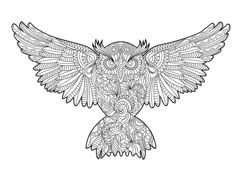 Owl Coloring Book For Adults Vector Stock Vector - Illustration of ...