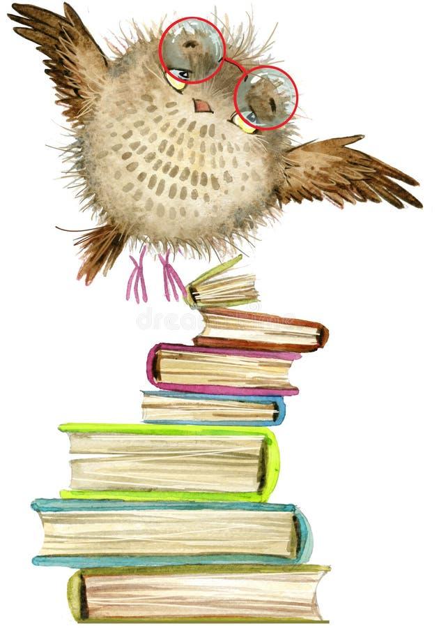 Owl. cute owl. watercolor forest bird. school illustration. cartoon bird. Owl. cute owl. watercolor forest bird. school books illustration. cartoon bird royalty free illustration