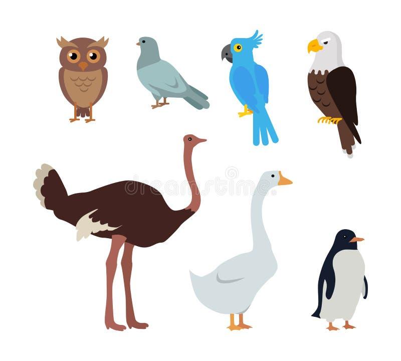 Owl Dove Blue Parrot Eagle-Strauß-Gans-Pinguin vektor abbildung